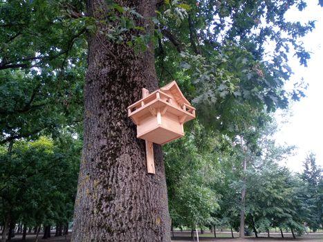Beautiful birdhouse on a tree. Birdhouse in the park.