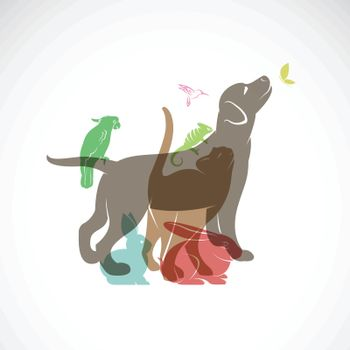 Vector group of pets - Dog, cat, parrot, chameleon, rabbit, butterfly, hummingbird isolated on white background., asy editable layered vector illustration.