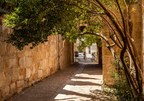 Narrow exit and alley from the museum at Salamanca University in Spain