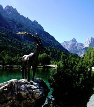 Ibex of Jasna Lake in Kranjska Gora
