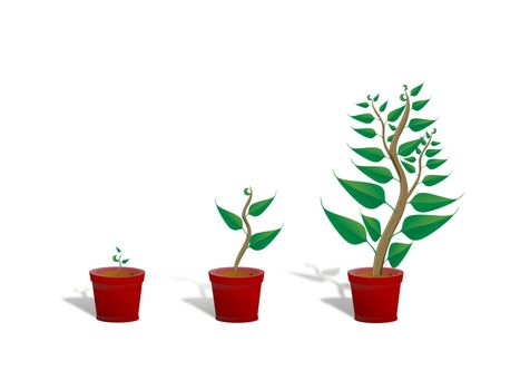three green plants in different sizes on white background - 3d rendering