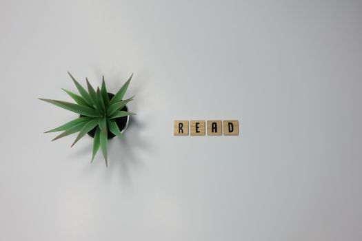 The word Read written in wooden letter tiles on a white background.