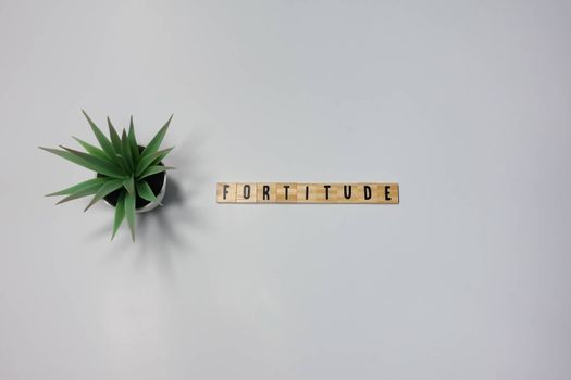 The word Fortitude written in wooden letter tiles on a white background.  Concept strength in business, health or sports.