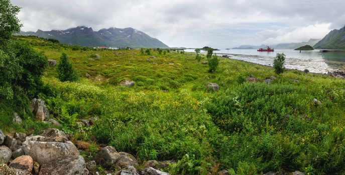 Beautiful scandinavian landscape with meadows, mountains and fjo