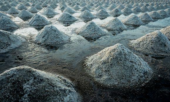 Sea salt farm in Thailand. Organic sea salt. Evaporation and cry