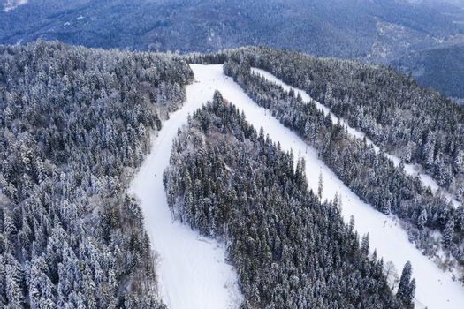 Aerial view of Borsec ski slope with frozen forest in Romania