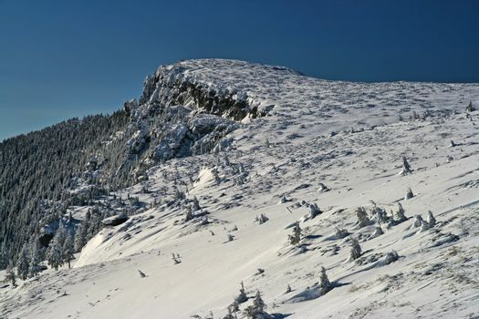 Snow covered mountain summit and trees in a sunny day in Romanian Carpathians