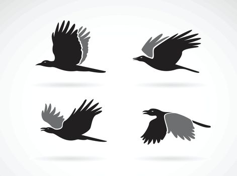 Vector group of black crow flying on white background. Birds. Animals. Easy editable layered vectors illustration.