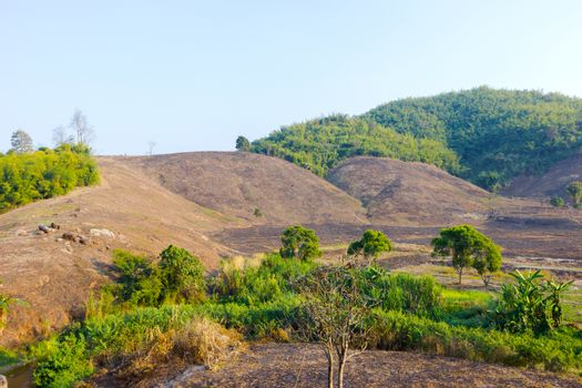 Deforestation on the mountain for agriculture in Chiang Rai, Tha