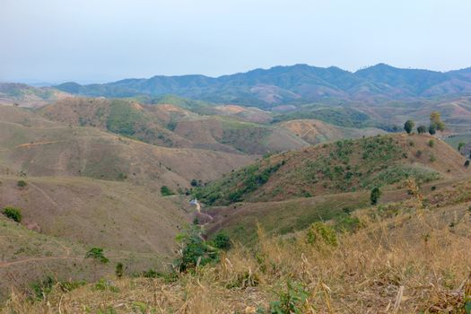 Deforestation on the mountain for agricultural in Chiang Rai pro