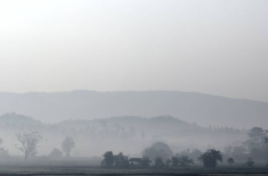 landscape of countryside in Thailand with mist in the early morning before sunrise. HDR
