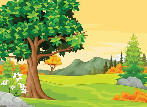 Autumn Forets View Background