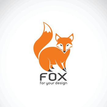 Vector of fox design on white background. Wild Animals. Fox logos or icons. Easy editable layered vector illustration.