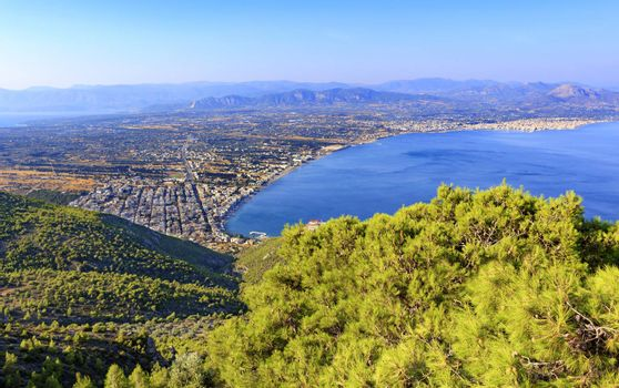 Beautiful fluffy spruce branch with cones in bright sunlight against the backdrop of the city of Loutraki and the blurry sea of the blue Corinthian Gulf in Greece from a bird's eye view.