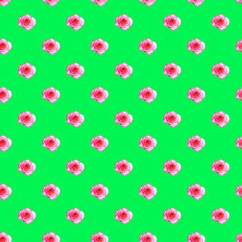 Seamless pattern with blooming rose bud on a light green background. Modern style isometric concept.