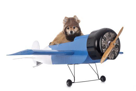 spitz and plane