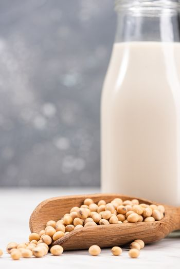 Alternative Non Dairy Soy or Soya Milk. Diet and Nutrition Concept.