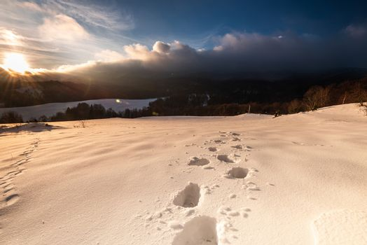 Foot Steps Trial in Deep Snow in Bieszczady Mountains at Winter. Sunrise Sun Rays. Warm Colors.