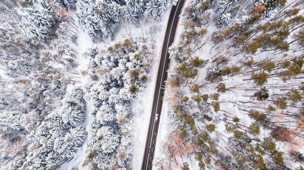 Car Drive Trough Snowy Forest in Winter Wonderland, Top Down Aerial View.