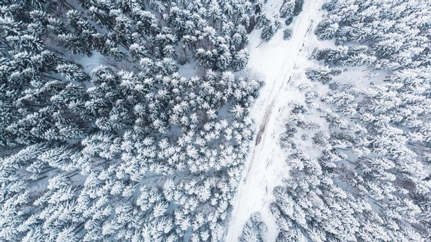 Country Lane Road in Winter Snowy Forest, Top Down Aerial View.