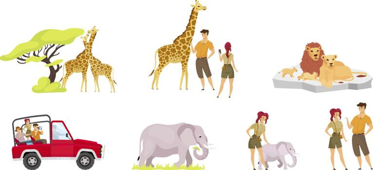 African expedition flat vector illustrations set. Pair of giraffes near tree. Tourist group in car. Woman and man observe elephants. Lion family. People and animal isolated cartoon characters