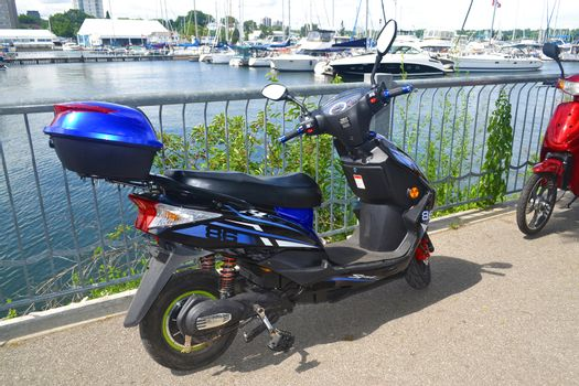 Two motorbikes sitting on the promenade on the harbor of Hamilton with many sailboats in the background