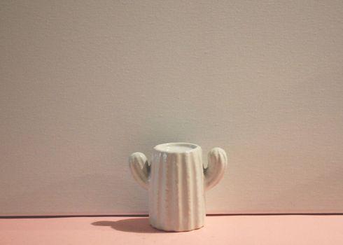 cactus in ceramica