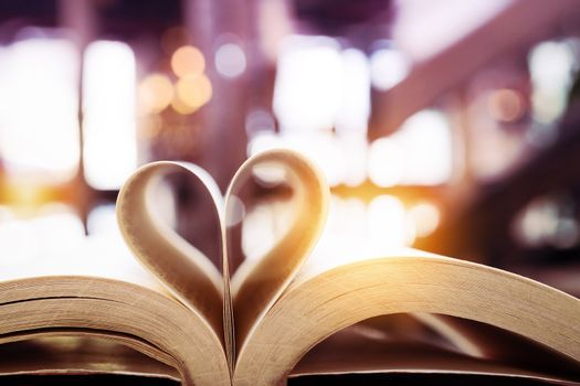 book in heart shape, Valentine, wisdom and education concept, wo