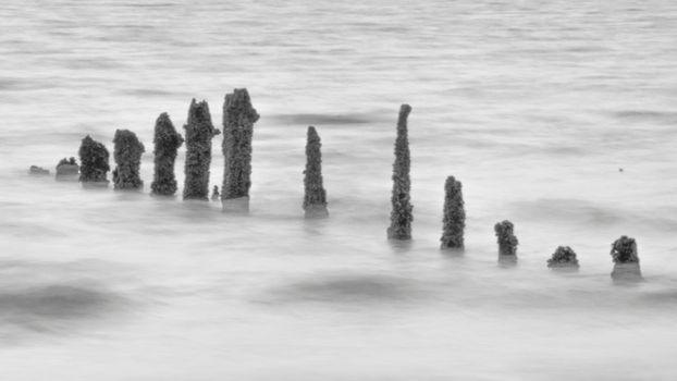 Weathered groynes in the sea