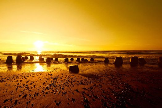 Gold sunset over summer sea. Nature and water.