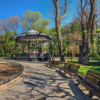 Odessa, Ukraine 28.04.2020. Spring flowering trees in the city garden of Odessa, Ukraine, on a sunny April morning