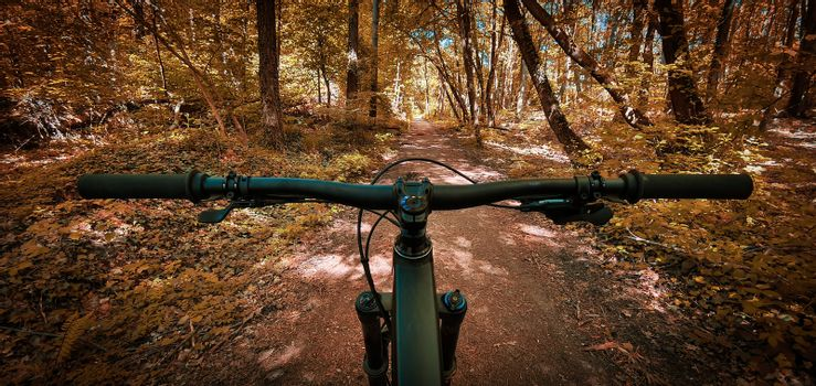 Beautiful autumn mountain bike trail seen from the eyes of a biker, with a mountain bike handlebars in the foreground. Mountain biking concept. Freedom and recreation concept.