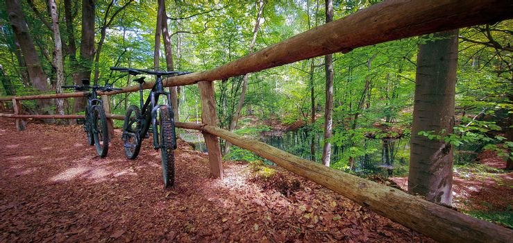 Two mountain bikes propped on a wooden fence next to a beautiful small lake on a green forest trail. Mountain biking concept. Freedom and recreation concept.