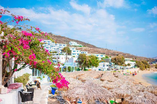 Flowering bougainvillea on the beach against the Mediterranean Sea in Greece