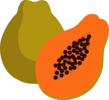 Papaya fruit, illustration, vector on white background.
