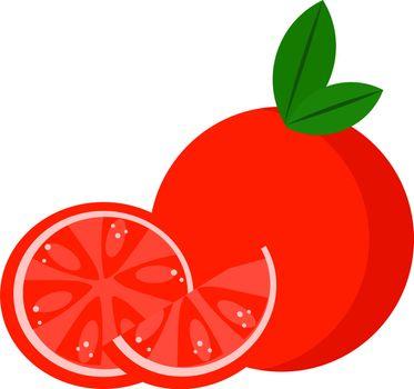 Grapefruit, illustration, vector on white background.