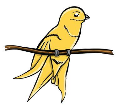 Yelow bird on branch , illustration, vector on white background