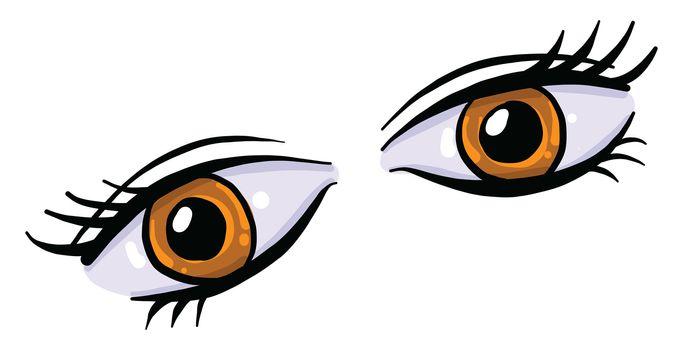 Brown eyes , illustration, vector on white background