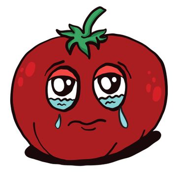 Crying tomato , illustration, vector on white background