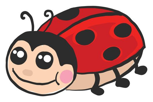 Cute ladybug , illustration, vector on white background