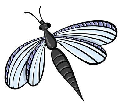 Dragonfly , illustration, vector on white background