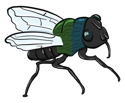 Small fly insect , illustration, vector on white background