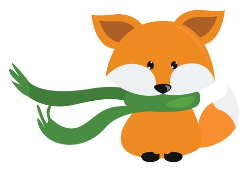 Fox with green scarf , illustration, vector on white background