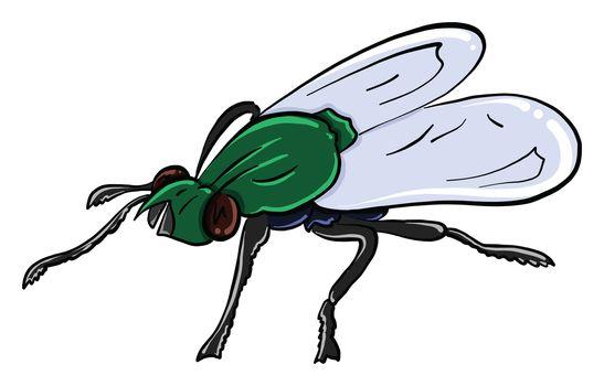Green fly , illustration, vector on white background