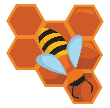 Honeycomb with bee , illustration, vector on white background