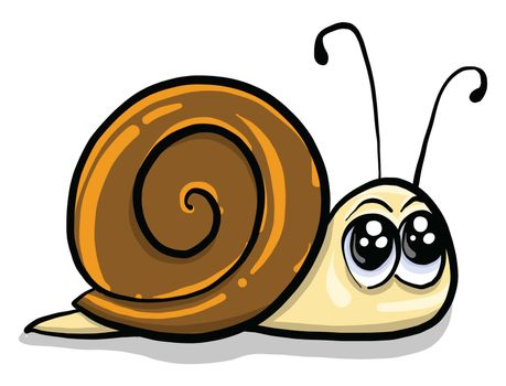 Small snail , illustration, vector on white background