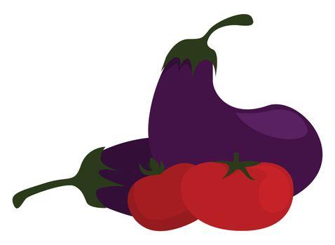 Fresh vegetables , illustration, vector on white background