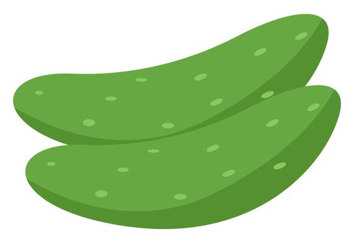 Green cucumbers, illustration, vector on white background