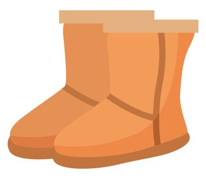 Woman brown winter shoes, illustration, vector on white background