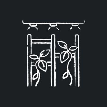 Vertical garden chalk white icon on black background